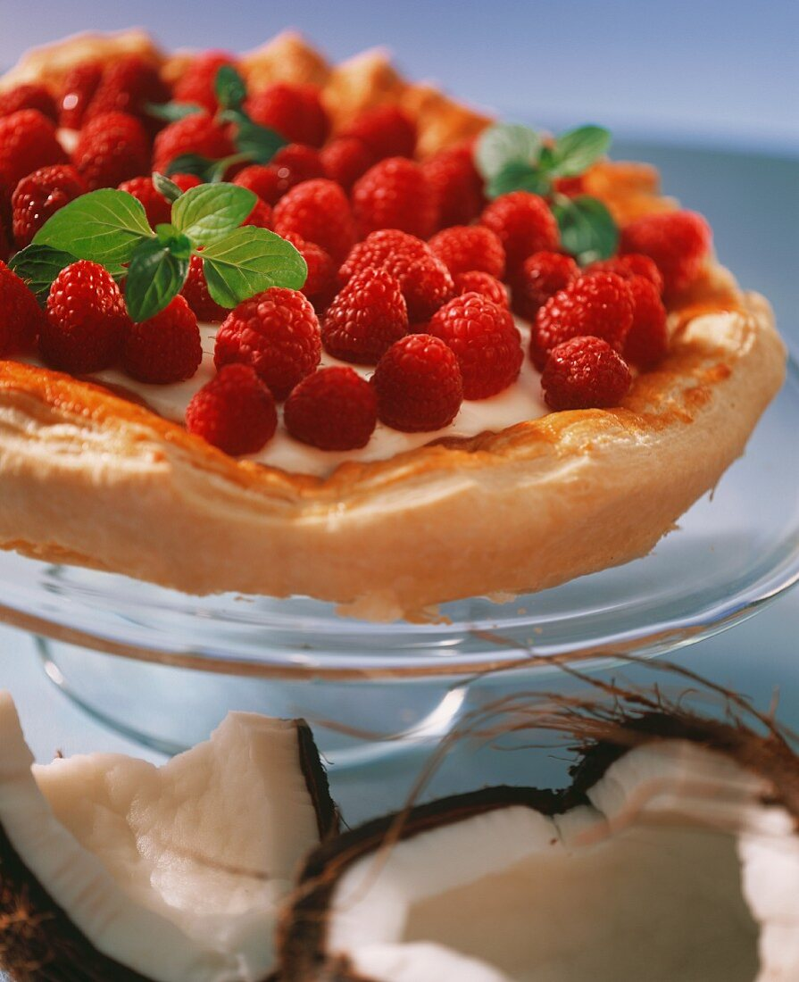 Raspberry and coconut gateau with fresh mint