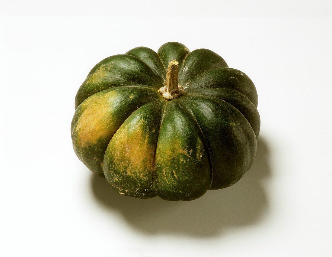 Green Japanese pumpkin