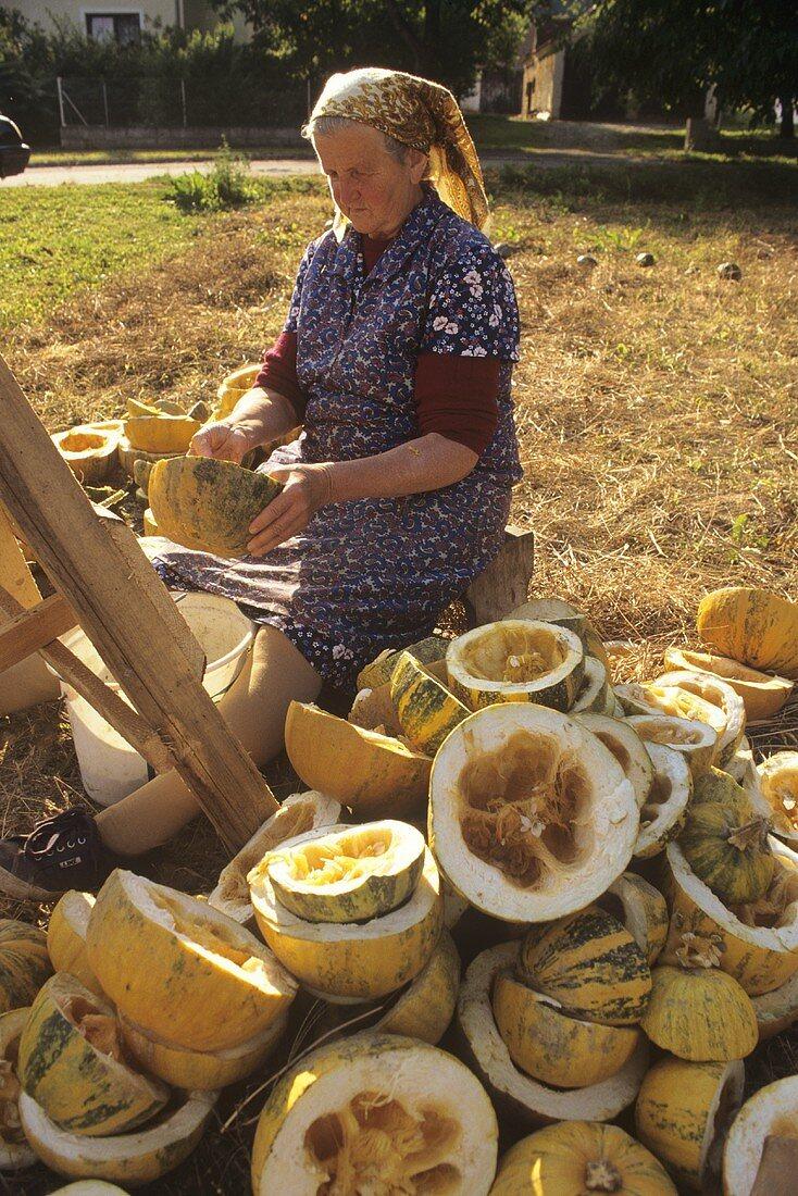 Pumpkin seed harvest in Austria