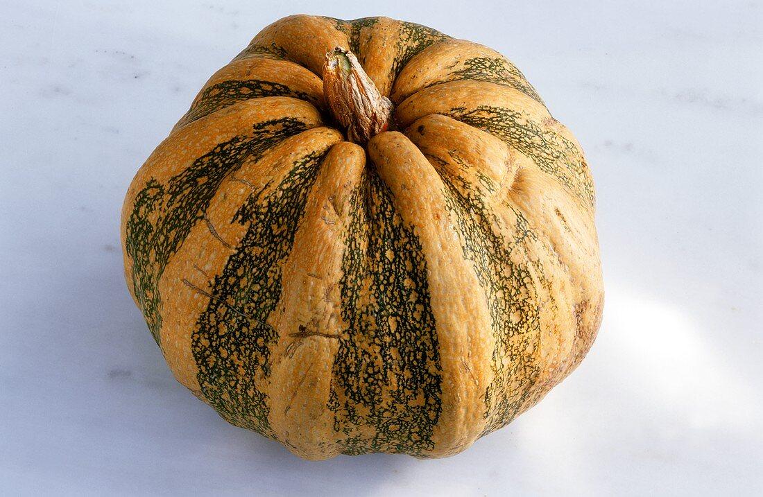 Kumikuri pumpkin