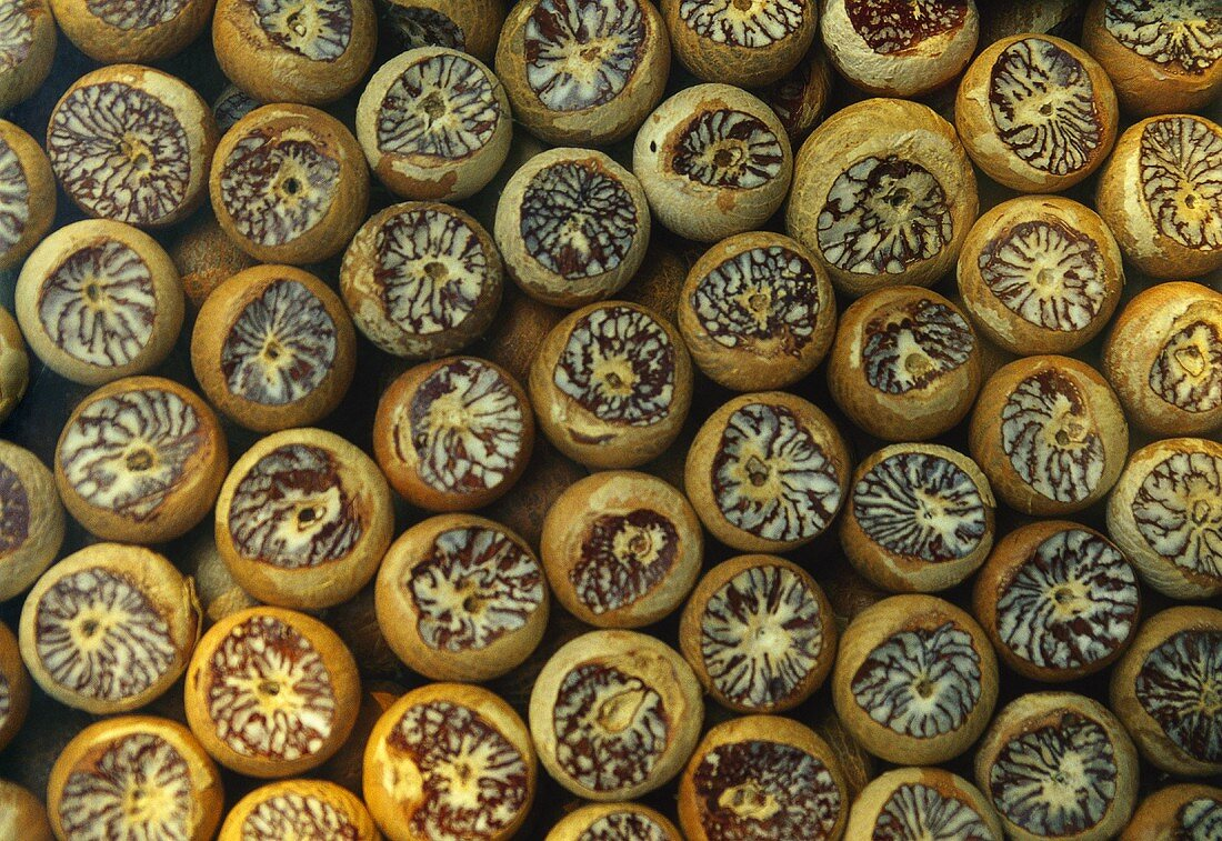 Betel nuts (filling the picture)