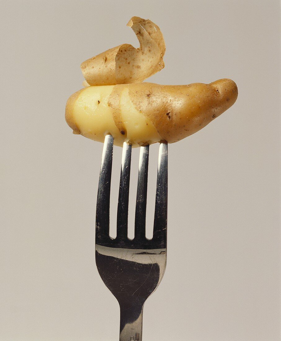 Potato cooked in its skin, on fork