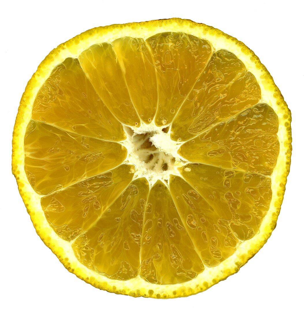 Half an ugli fruit