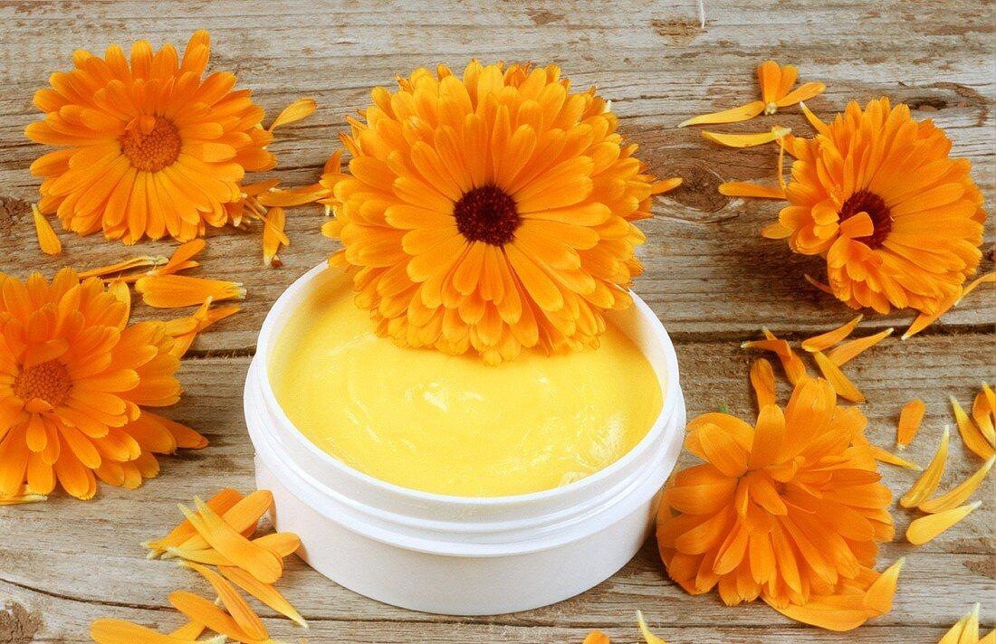 Marigolds and marigold cream