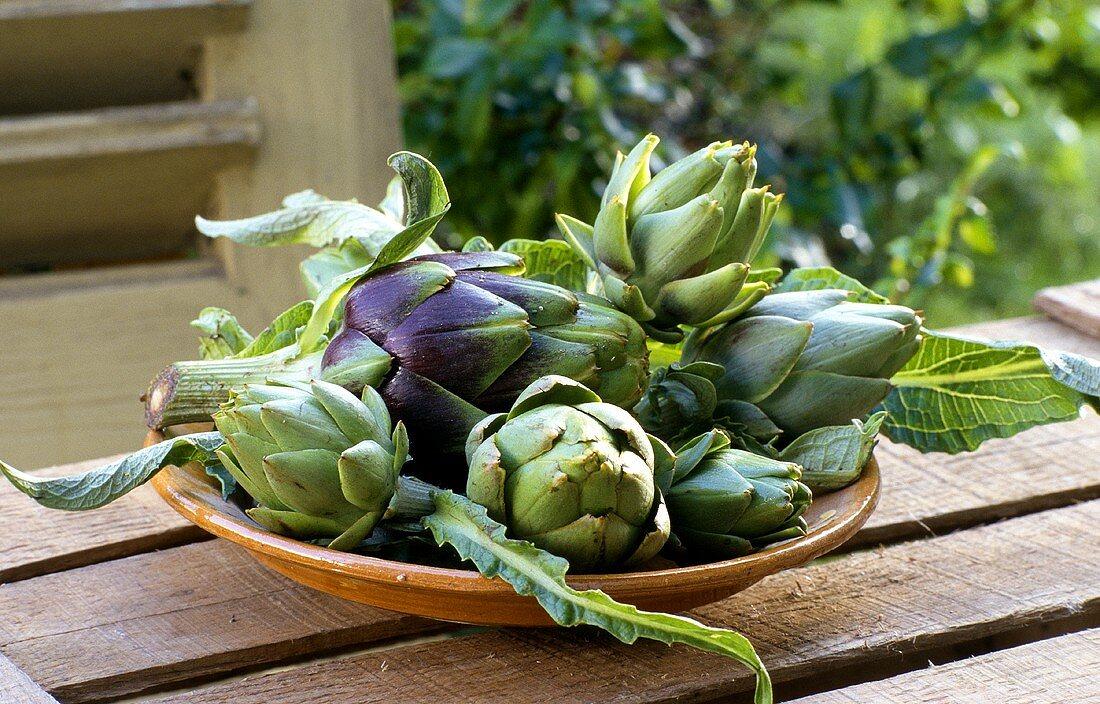 Baby artichokes in bowl