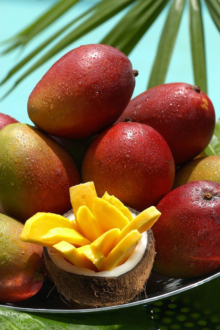 Fresh mangoes and slice of mango in hollowed-out coconut