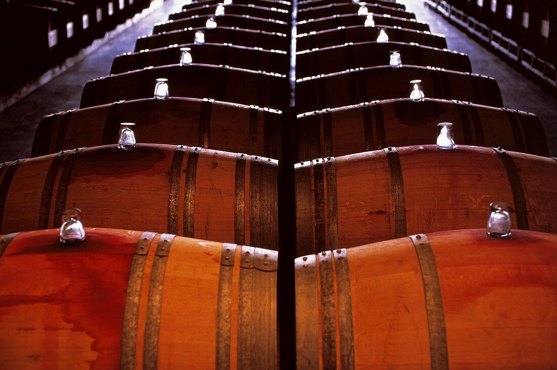 Wooden barrels in a wine cellar in the Chilean Maipo Valley
