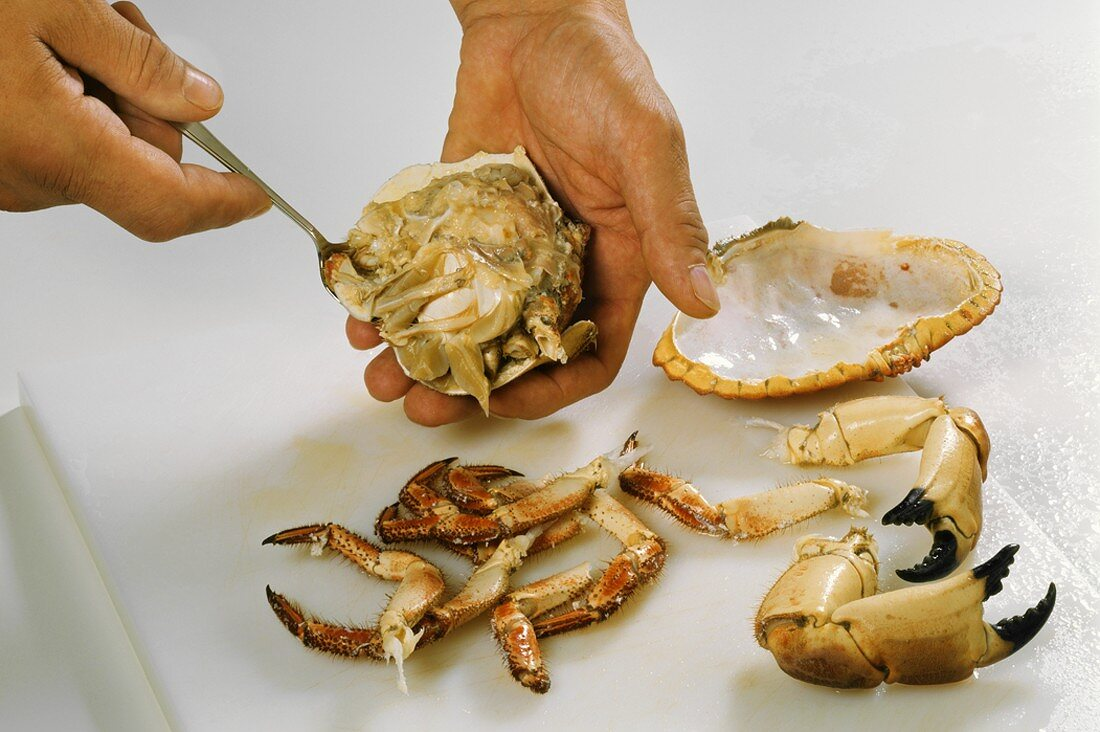 Removing the meat from a crab