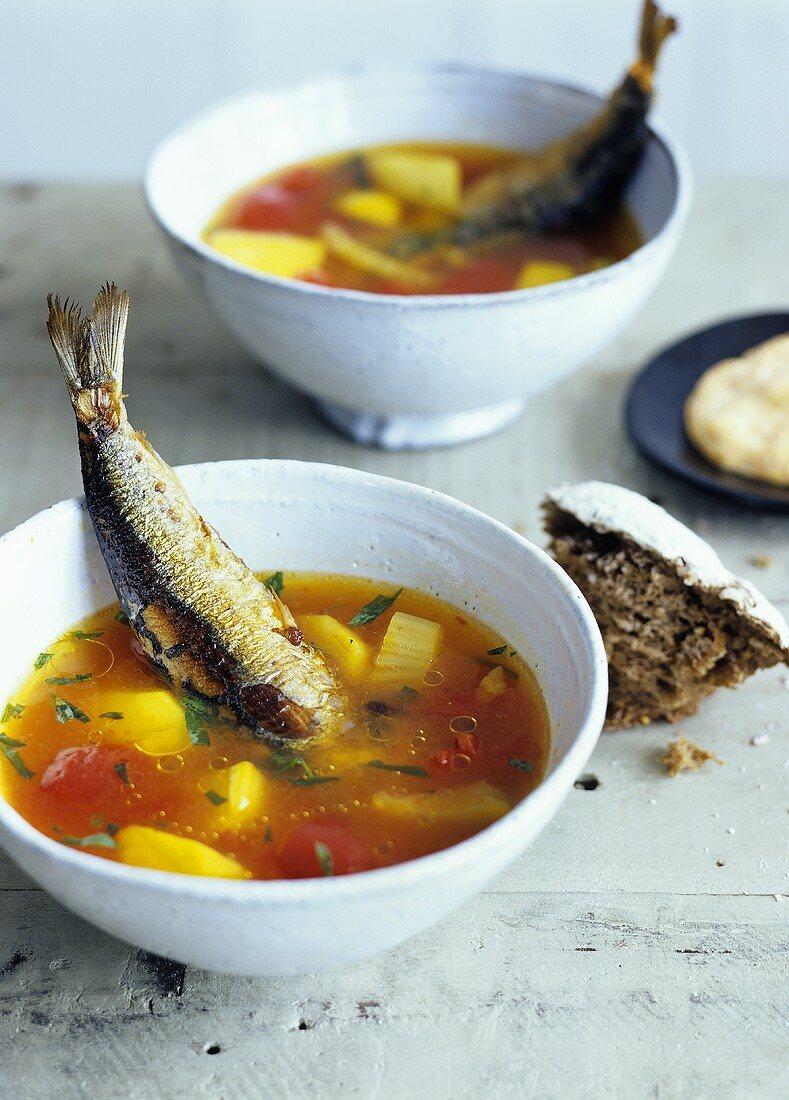 Fish soup with fried sardine
