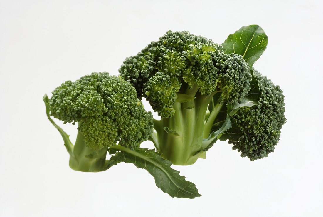 Broccoli Flowerettes Broccoli Flowerettes
