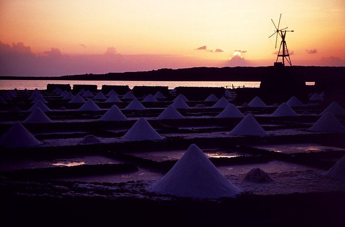 Piles of Sea Salt in Lanzarote, Canary Islands, Spain