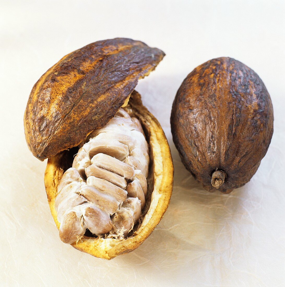 Whole and opened cacao fruit and cocoa beans