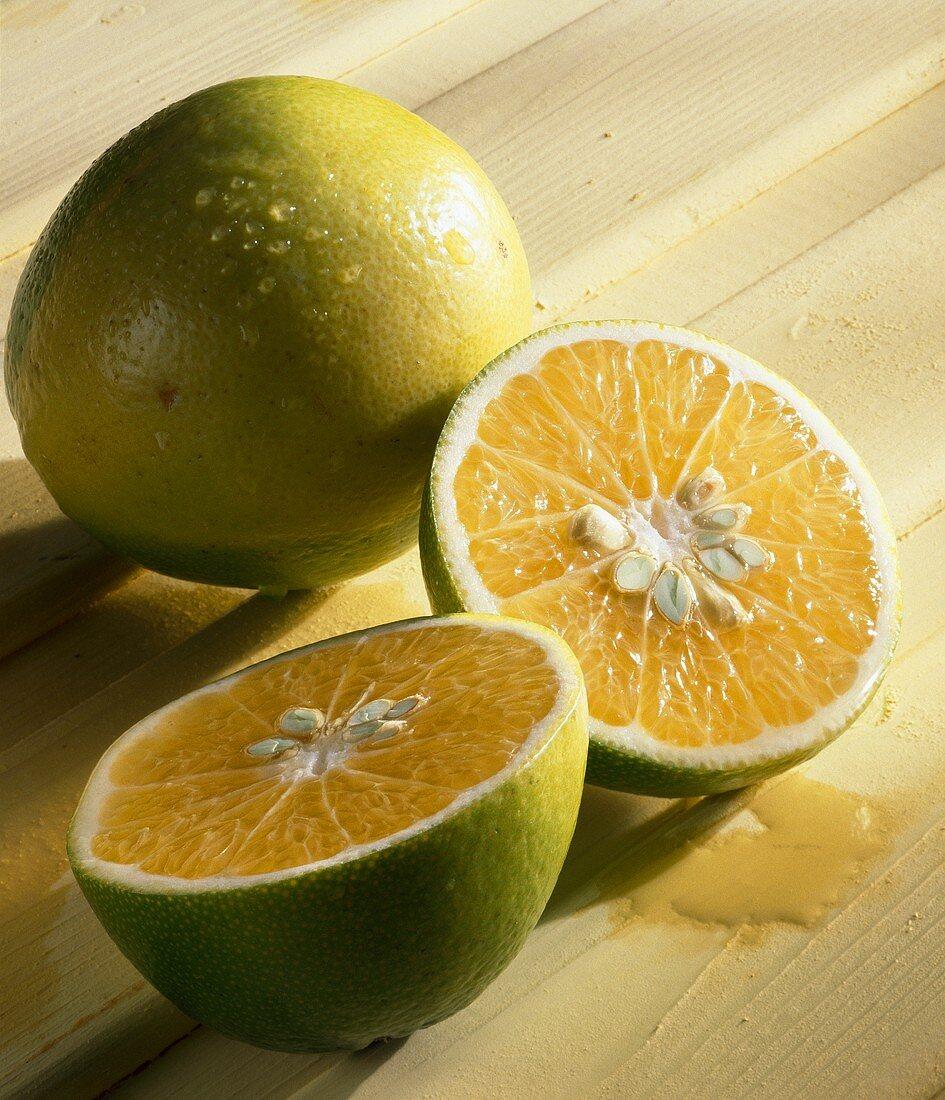 Tangelo, variety 'Mapo', mandarin x grapefruit cross, Italy