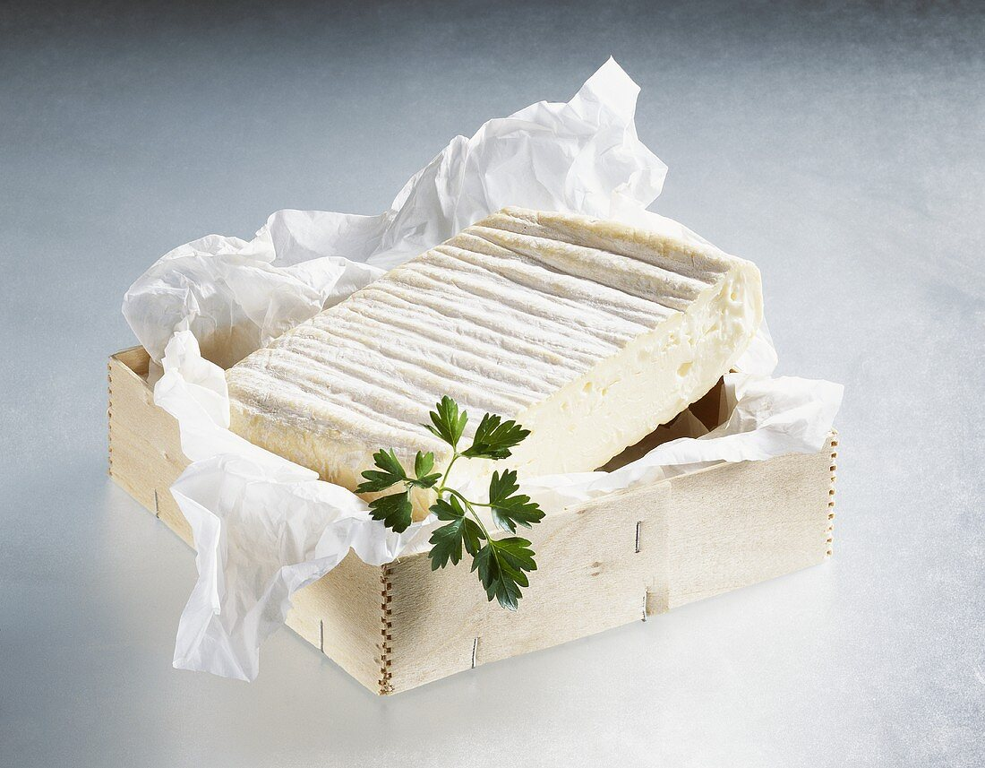 Soft cheese from Allgäu in woodchip box