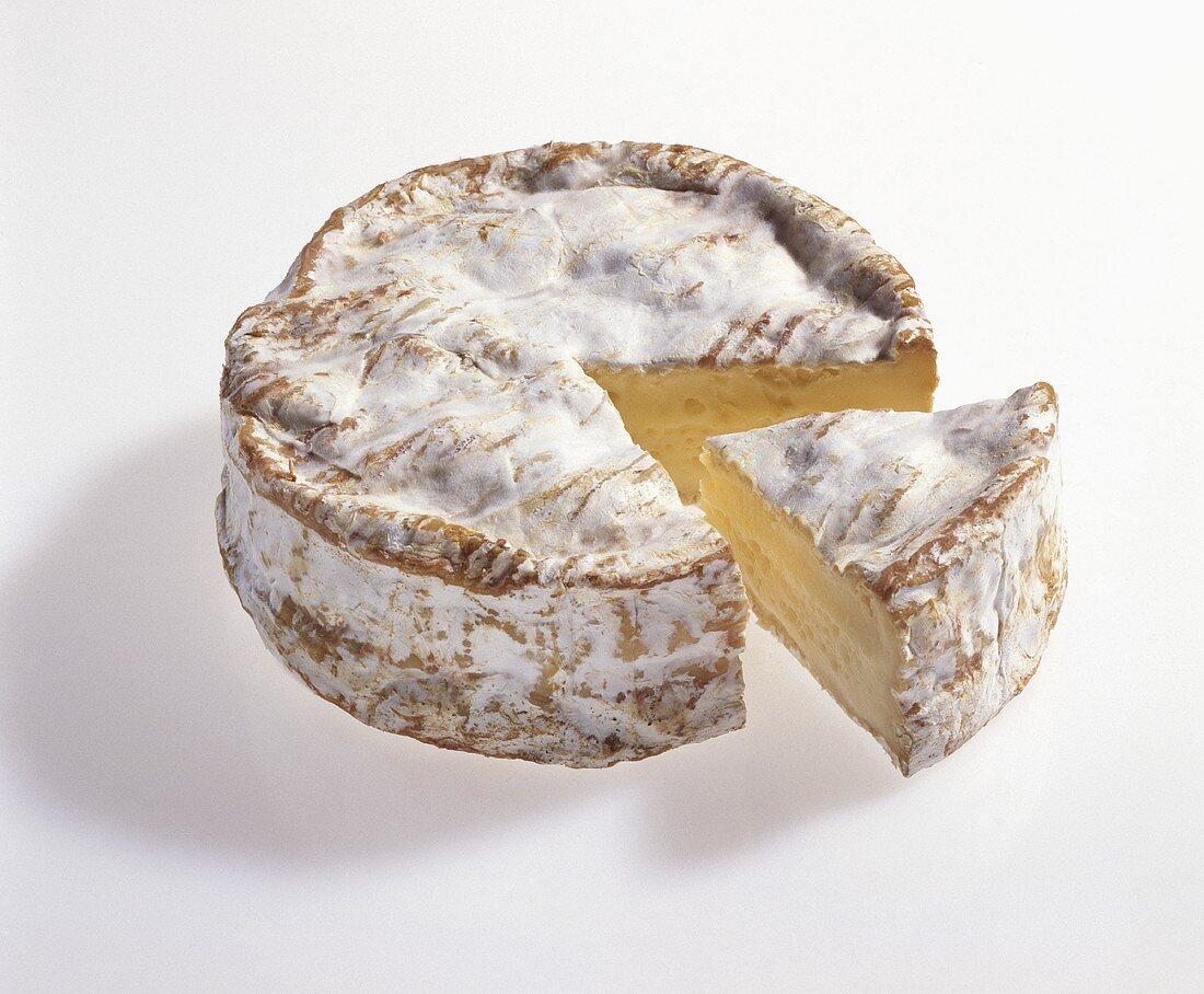 Camembert de Normandie, well matured
