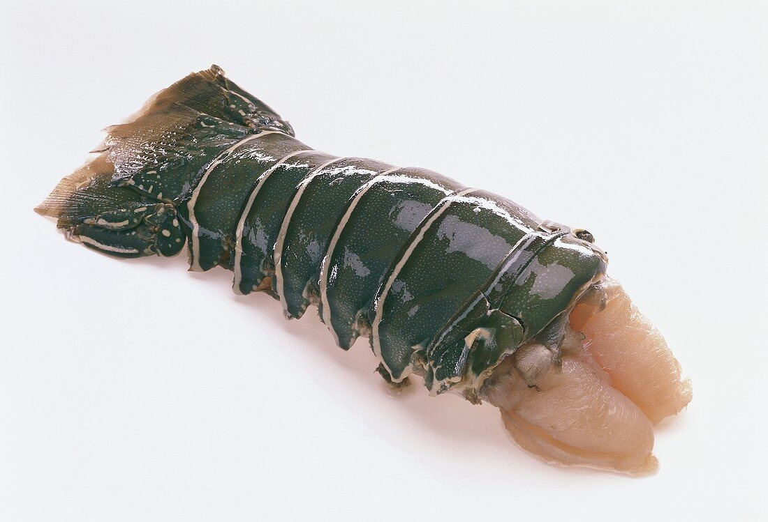 Fresh spiny lobster tail