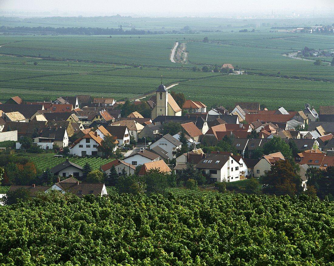 Ungstein, wine village in Rheinpfalz, Pfalz, Germany