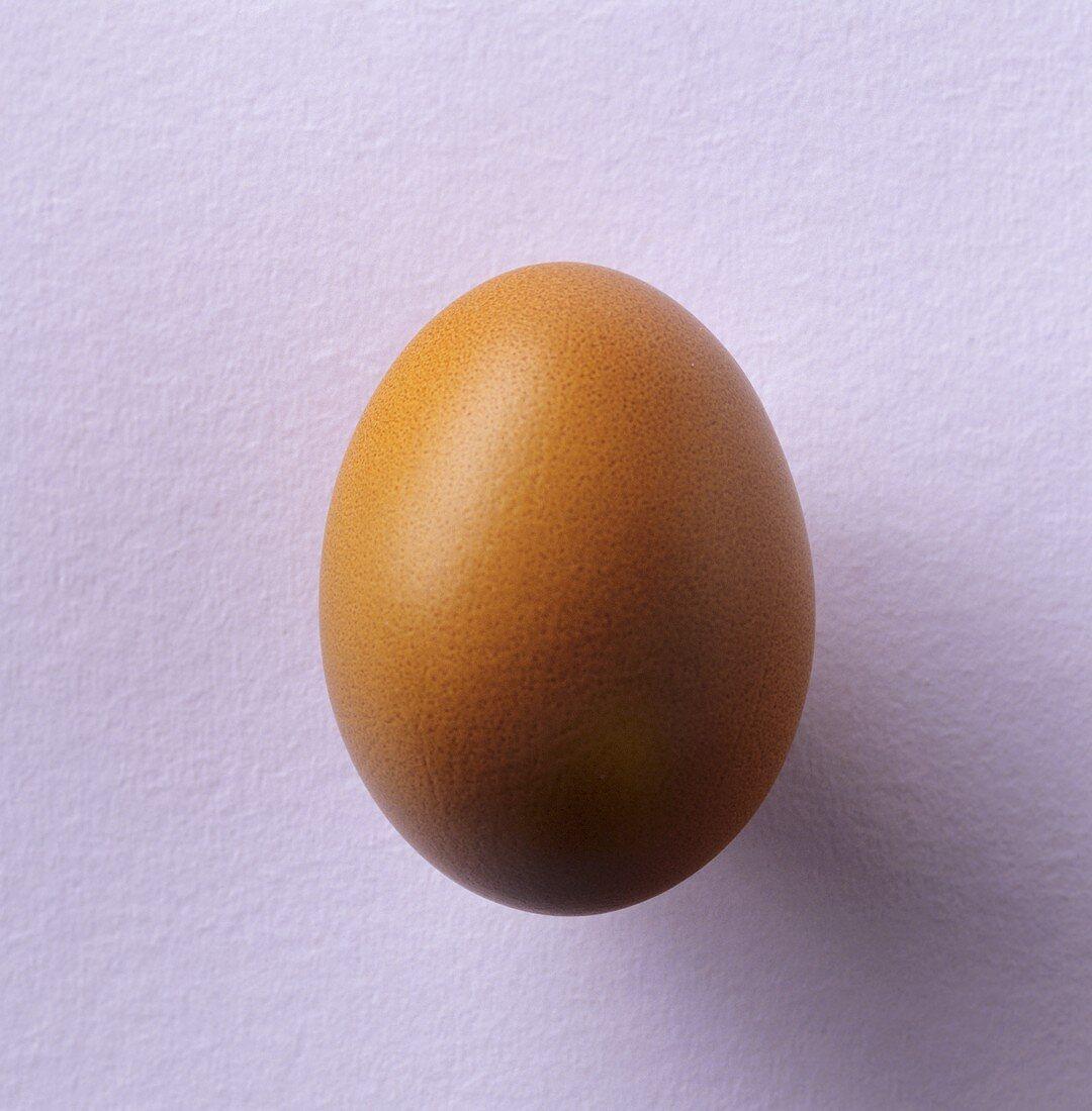 Brown hen's egg