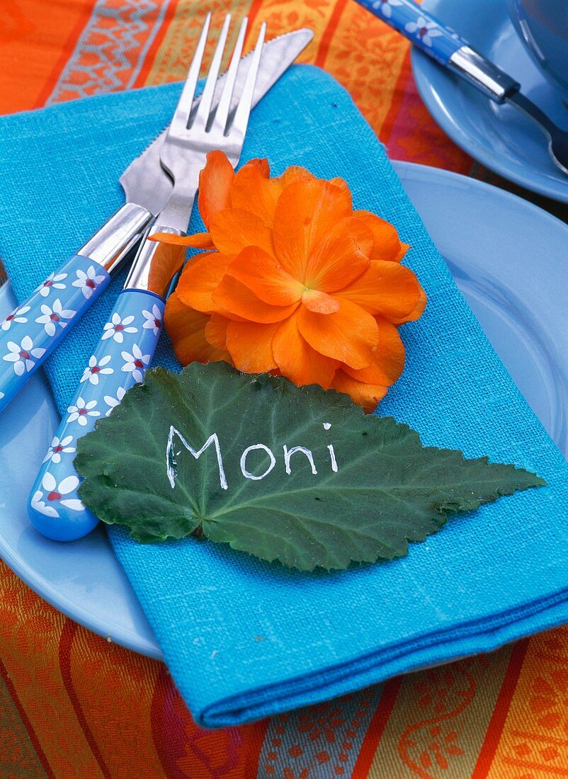 Summery place-setting with place card (leaf) and begonia