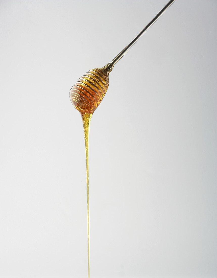 Honey dripping from honey dipper