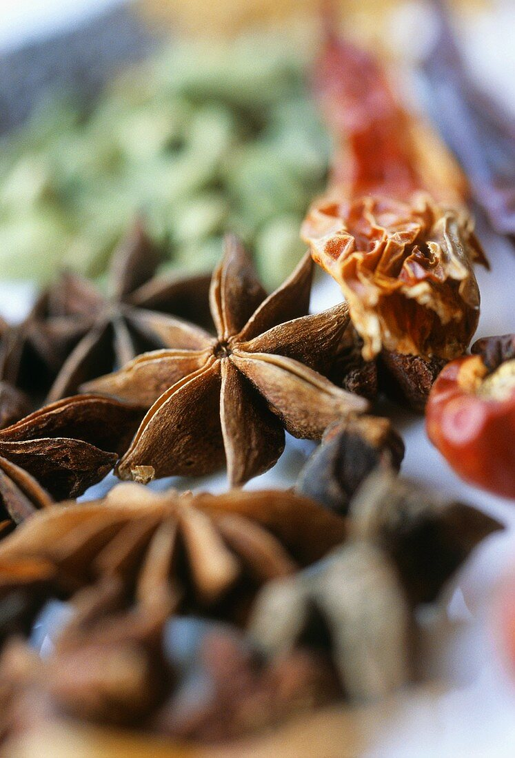 Star anise and dried chili peppers