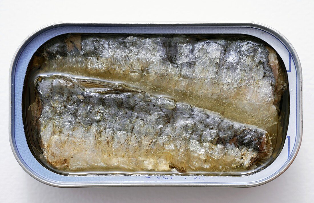 Sardines in oil in opened tin (overhead view)