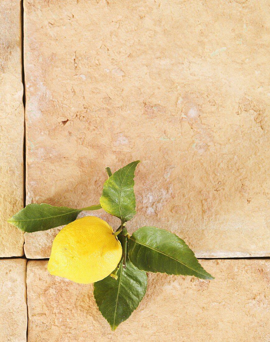 Lemon on terracotta slabs