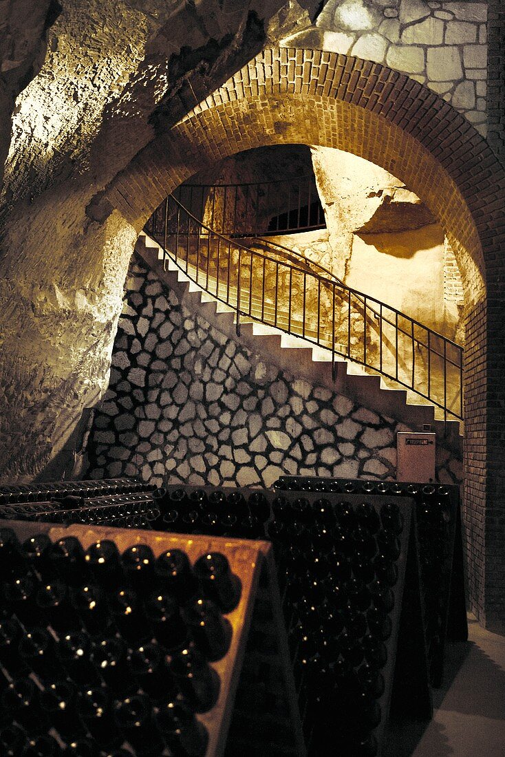 Champagne in a riddling rack in Tattinger, Reims, France