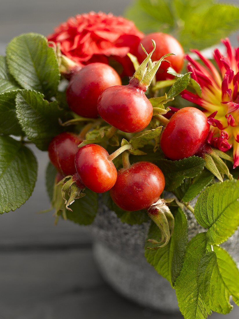 Rose hips and autumn flowers in stone mortar (close-up)