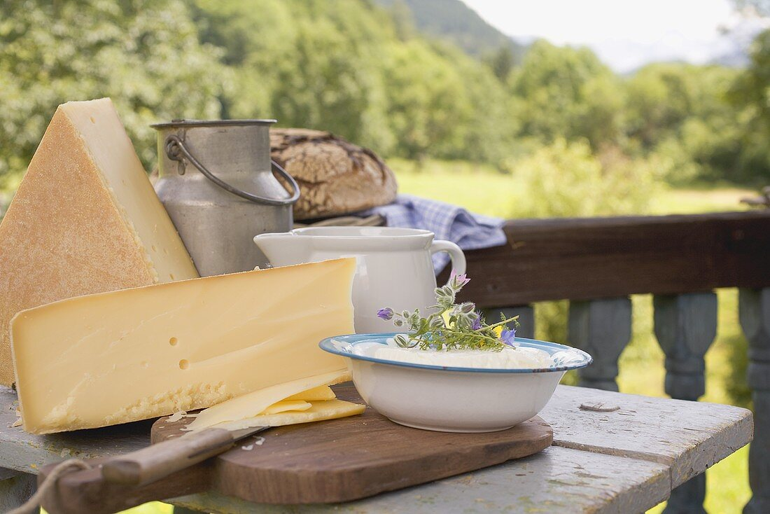Rustic still life with cheese, quark, milk and bread