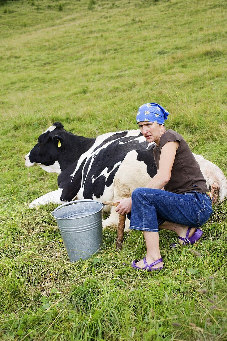 Woman with milking stool and bucket beside a cow