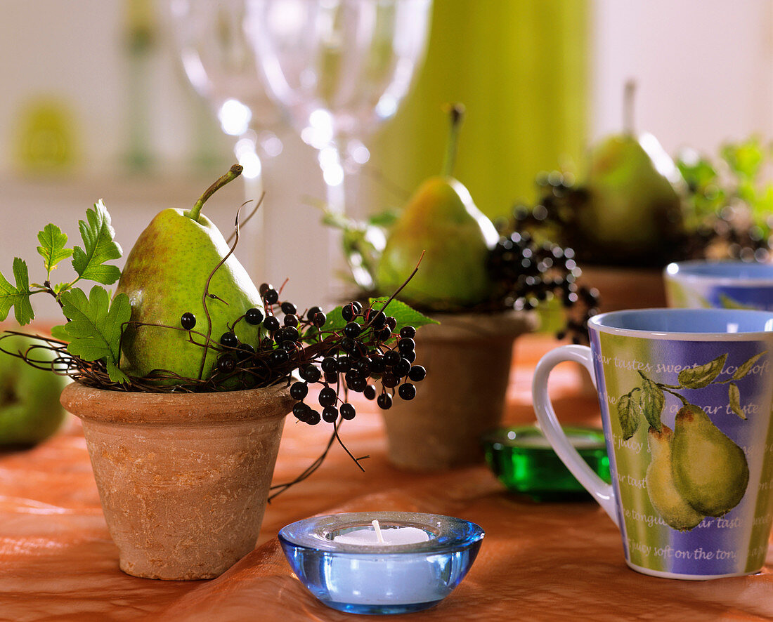 Terracotta pots with pears and elderberries, hawthorn leaves