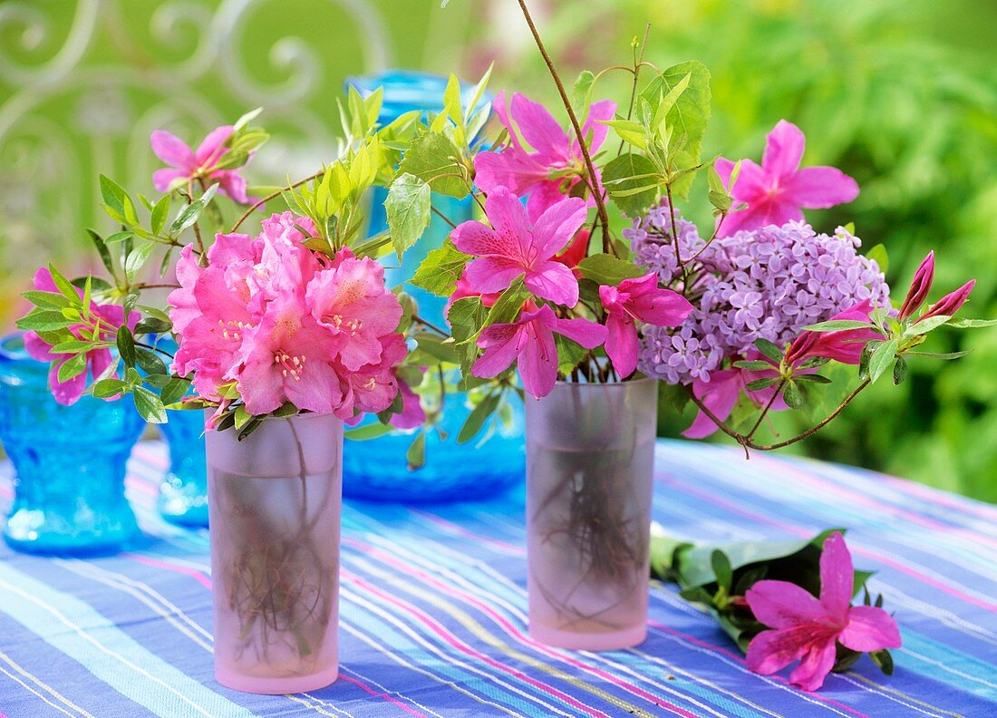 Rhododendron, azaleas, lilac and birch in glasses