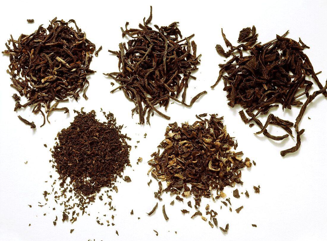 Assorted Tea Leaves