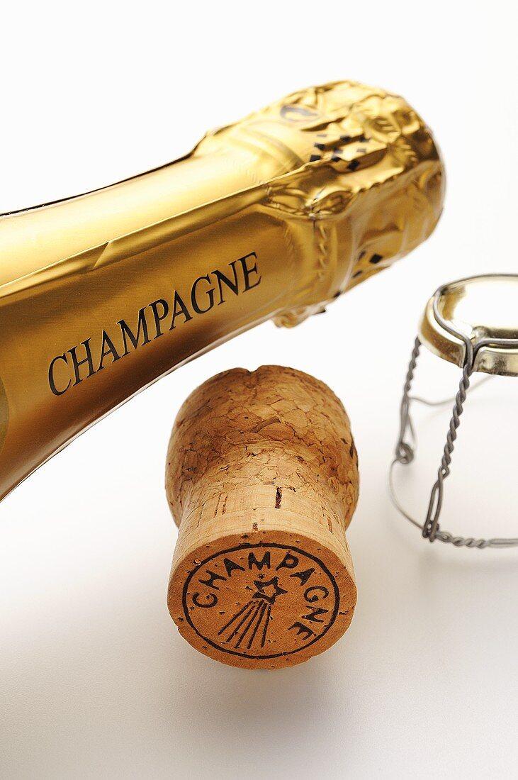Champagner-Flaschenhals mit Korken und Agraffe