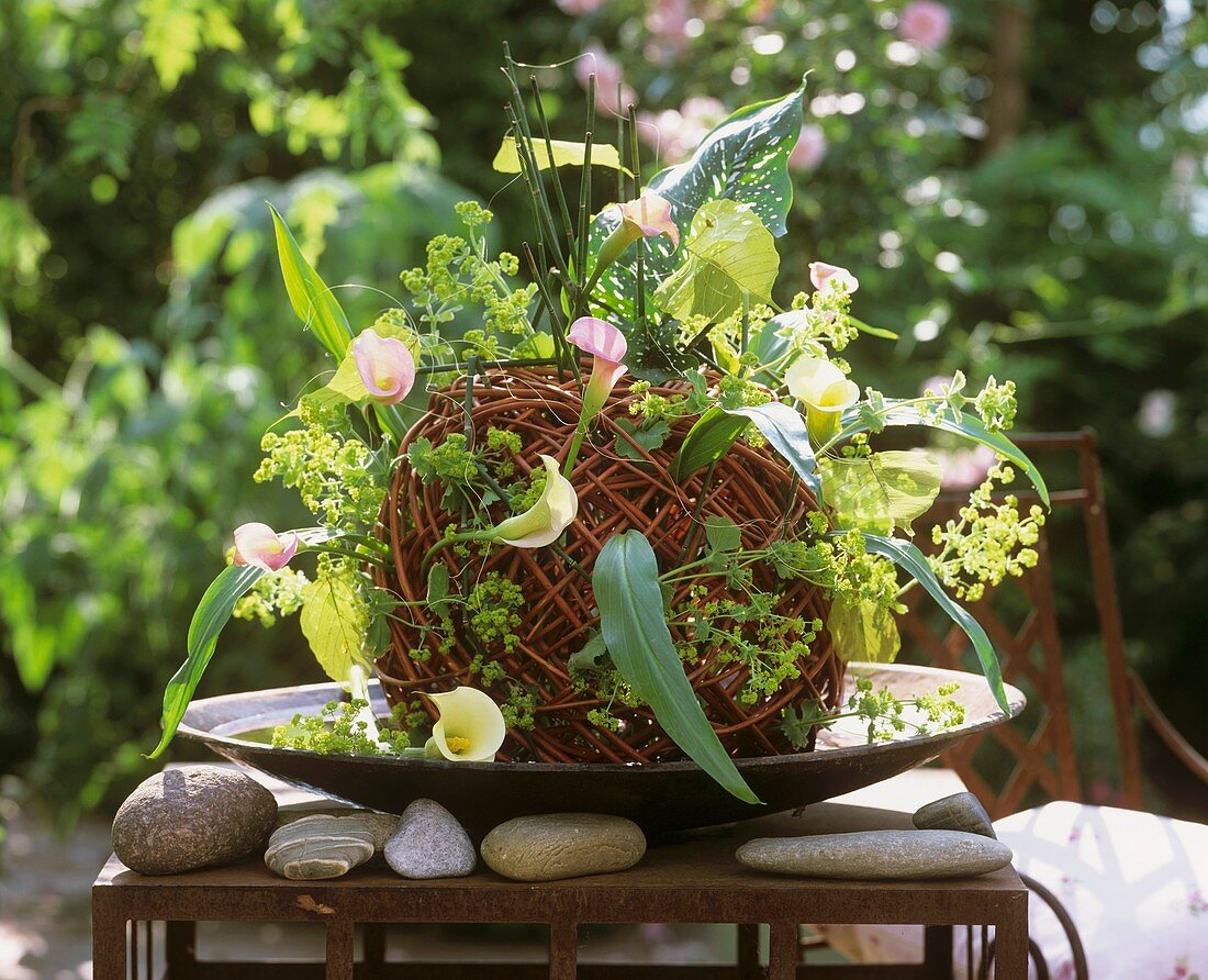 Arrangement with Calla lilies and lady's mantle