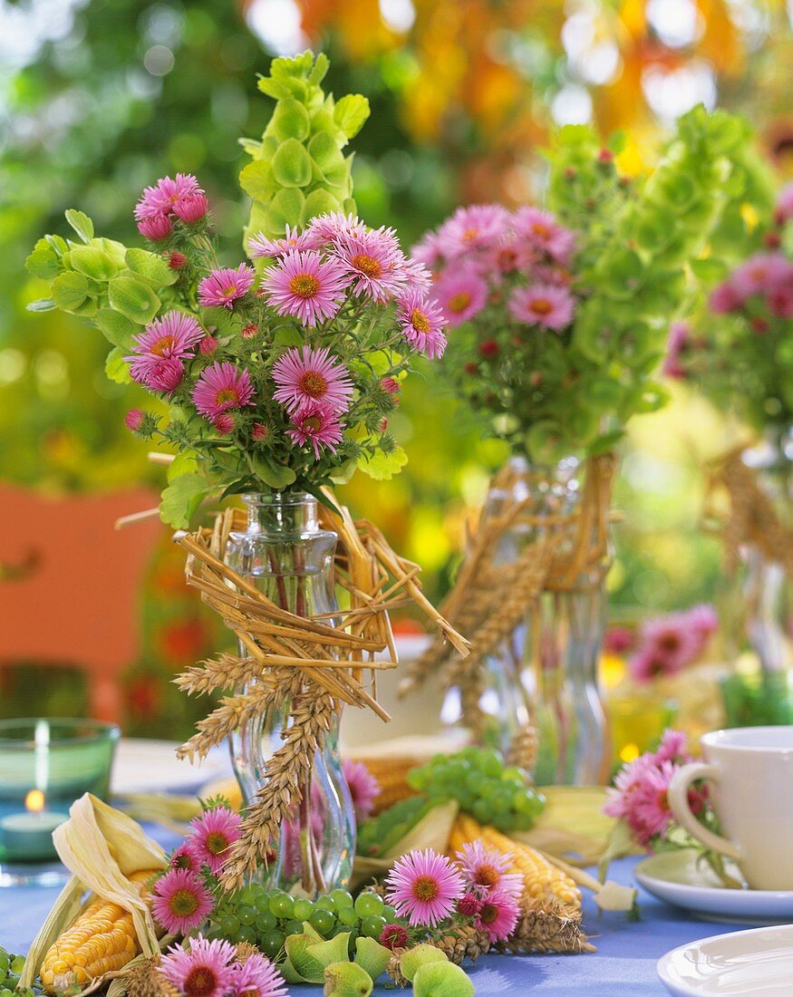 Small posies of Michaelmas daisies 'Rosa Sieger'