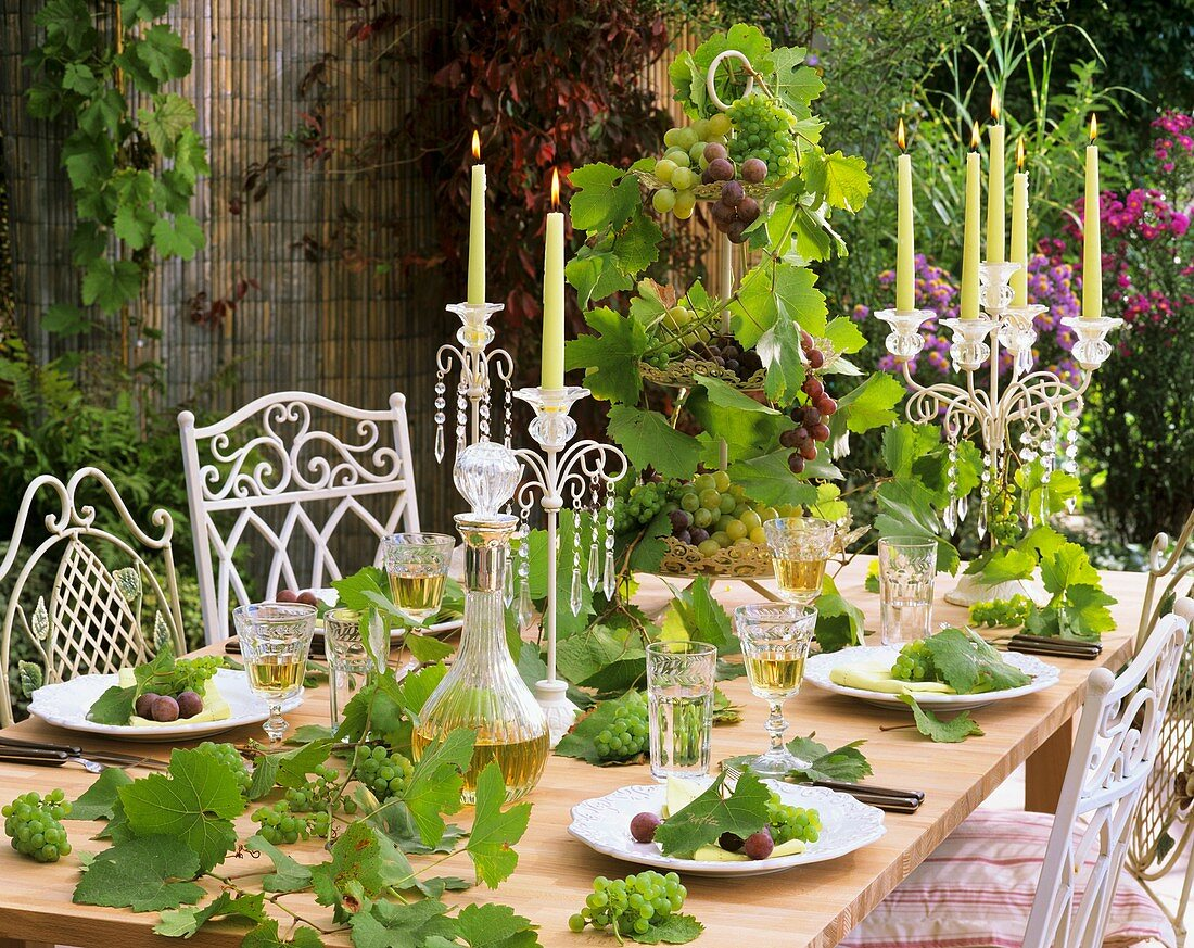Festive table with wine, grapes and vine tendrils