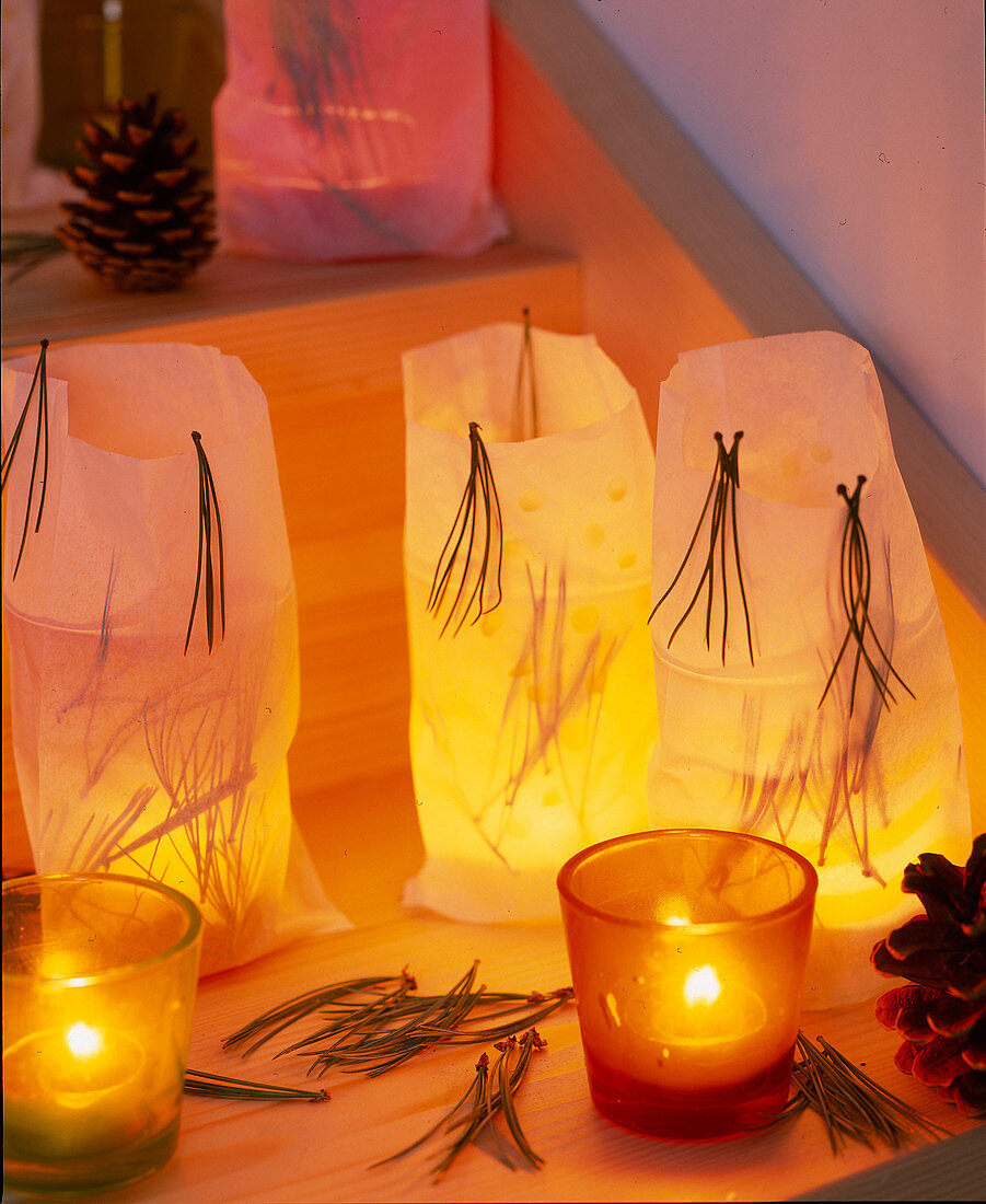 Sandwich bags with pine needles used as wind lights