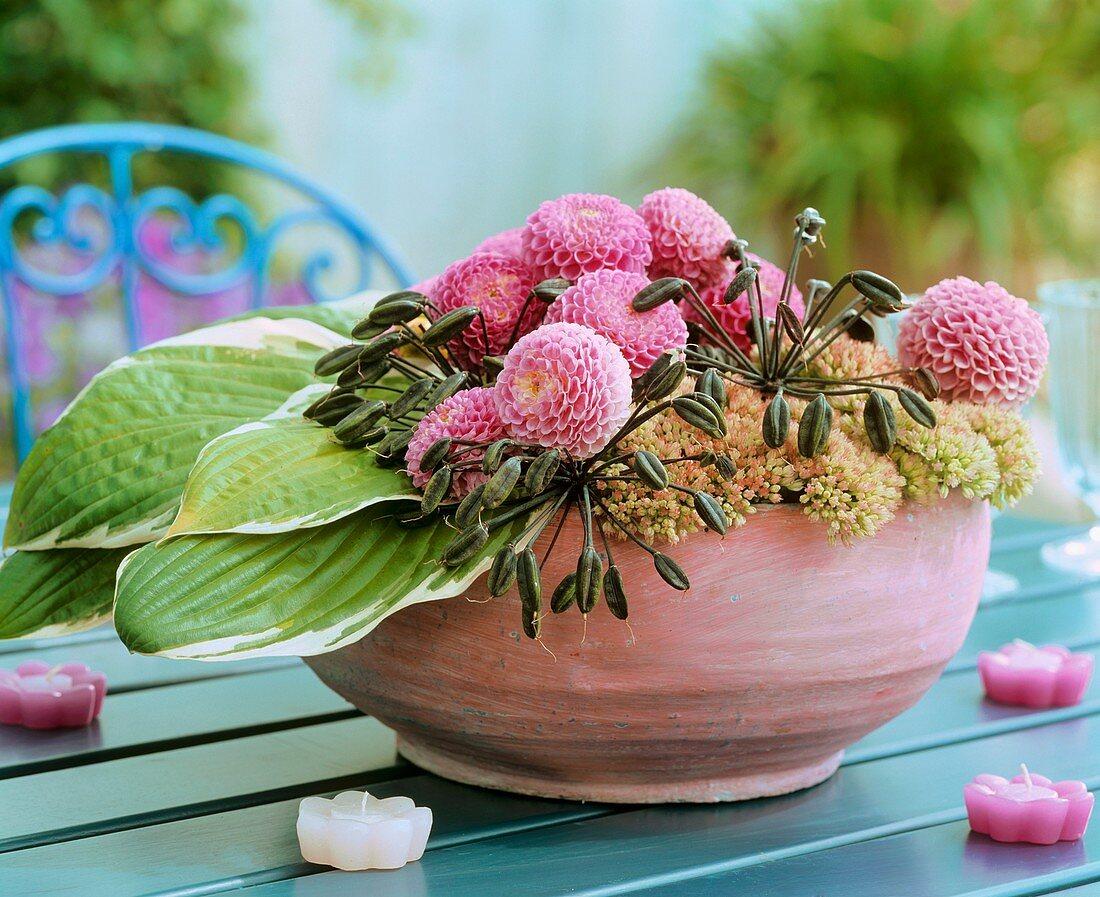 Bowl of dahlias, Hosta leaves and Sedum