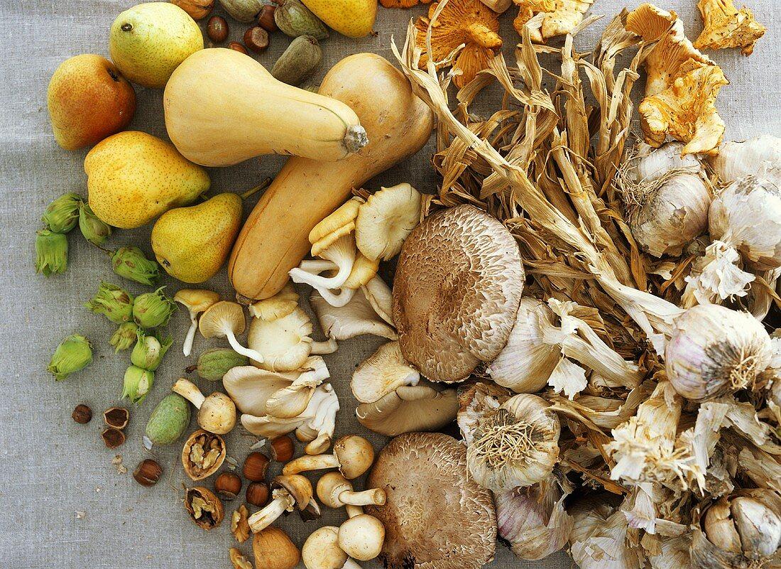 Autumn still life with vegetables, mushrooms, fruit & nuts