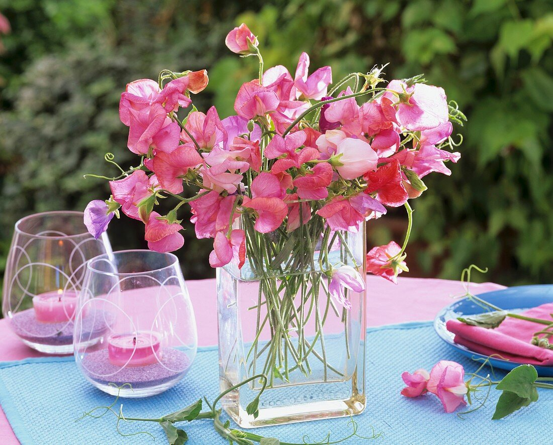 Bunch of sweet peas in square vase and windlights