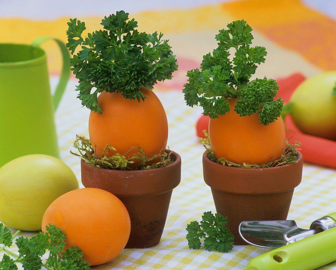 Parsley in blown eggs in terracotta pots