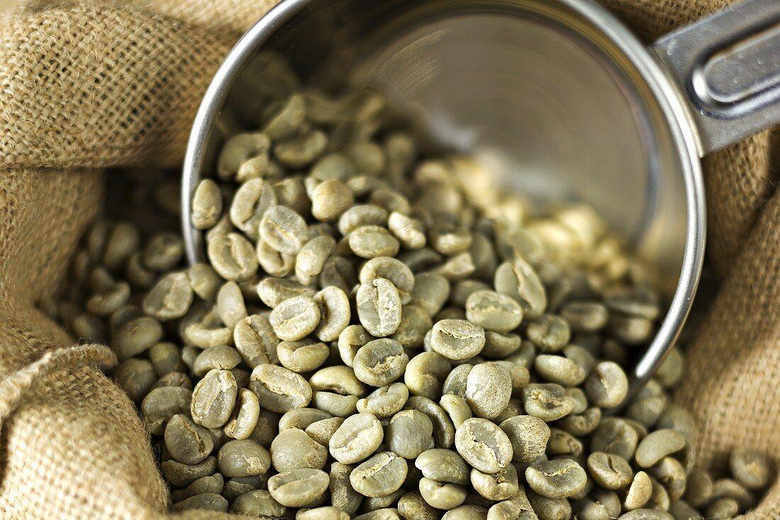 Green coffee beans on hessian sack