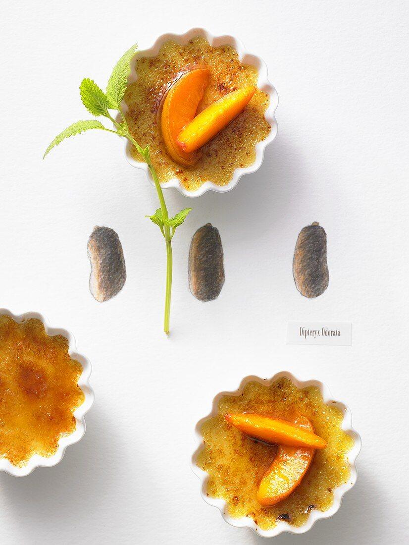 Tonka bean crème brûlée with glazed apricots