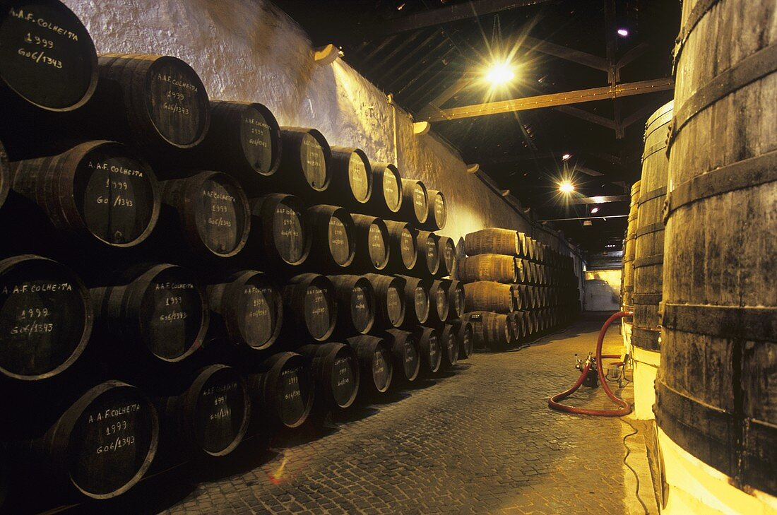 Port wine barrels in cellar of Ferreira Porto, Portugal