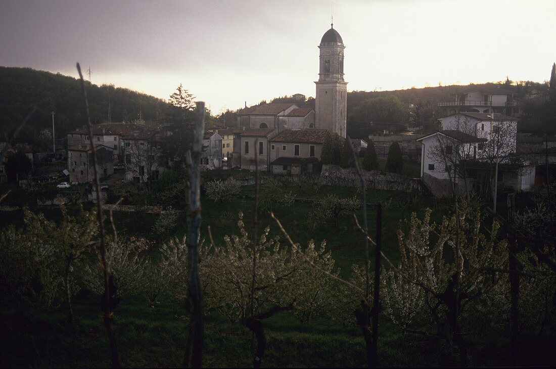 Negrar, Veneto, Italy