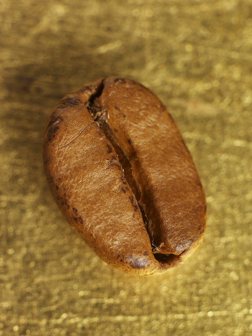 A coffee bean on gold background (close-up)