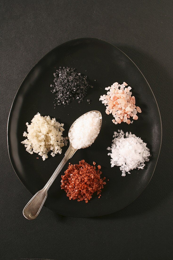 Various types of salt on plate (overhead view)