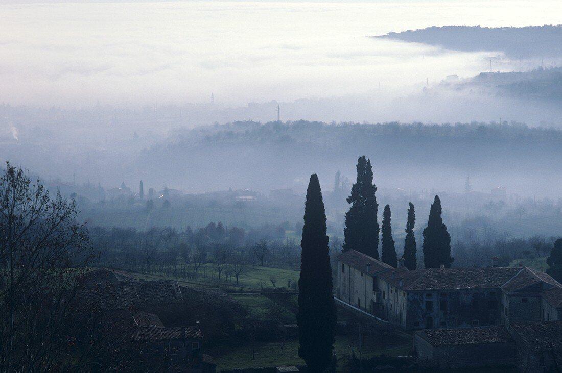 Wintry scene in the Valpolicella region, Veneto, Italy